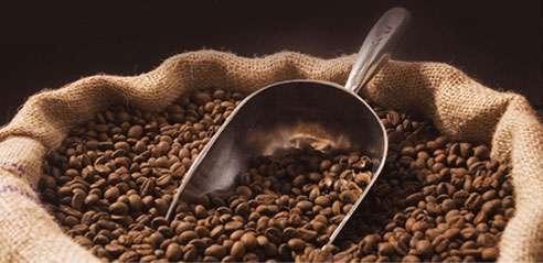 Kahve, karaciğer hastalıkları ve kanser gelişimini önleyebilir mi?