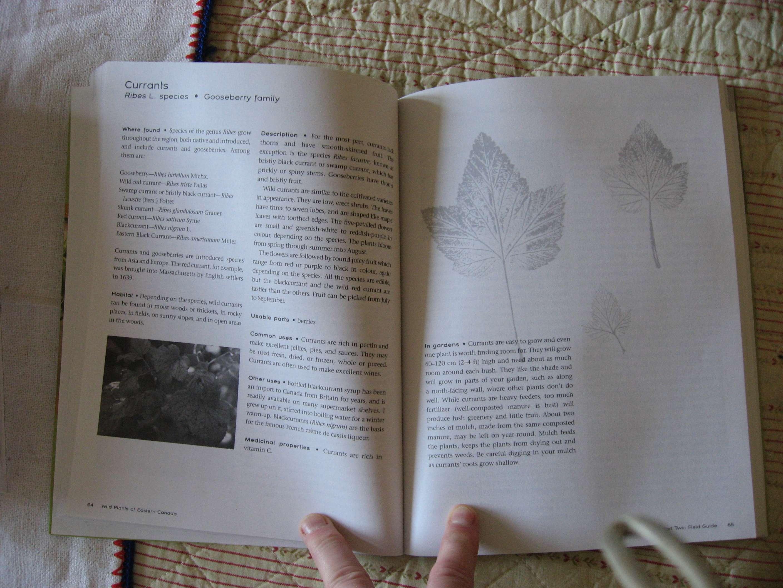 Recherche Livres Flore Faune Amerique Du Nord Quebec